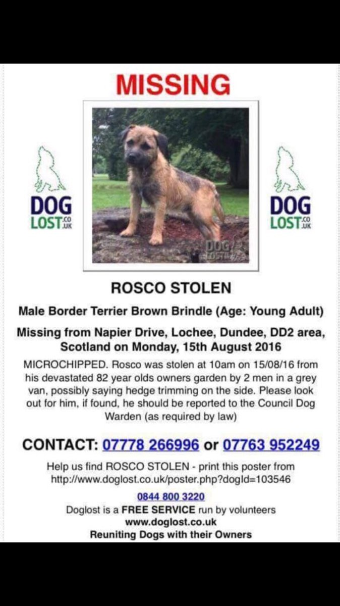 Let's get this boy back! Have you seen Rosco? Elderly owner completely devastated. https://t.co/zVJSFROUMO