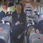 Corbyn actually gave his seat to Harambe but you wont read that in the MSM https://t.co/PuvwruwLLL https://t.co/3YpfFINtGy