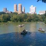 Central Park by @seejaymartin90 via @My_Cen_ParkNYC #newyork #nyc https://t.co/VrKFyhJQHl