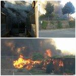 #Roma, Canile della Muratella: lincendio mette in luce lo stato di abbandono (https://t.co/LJgUlkfJhR) #RomaPulita https://t.co/FbPMs0Gsme