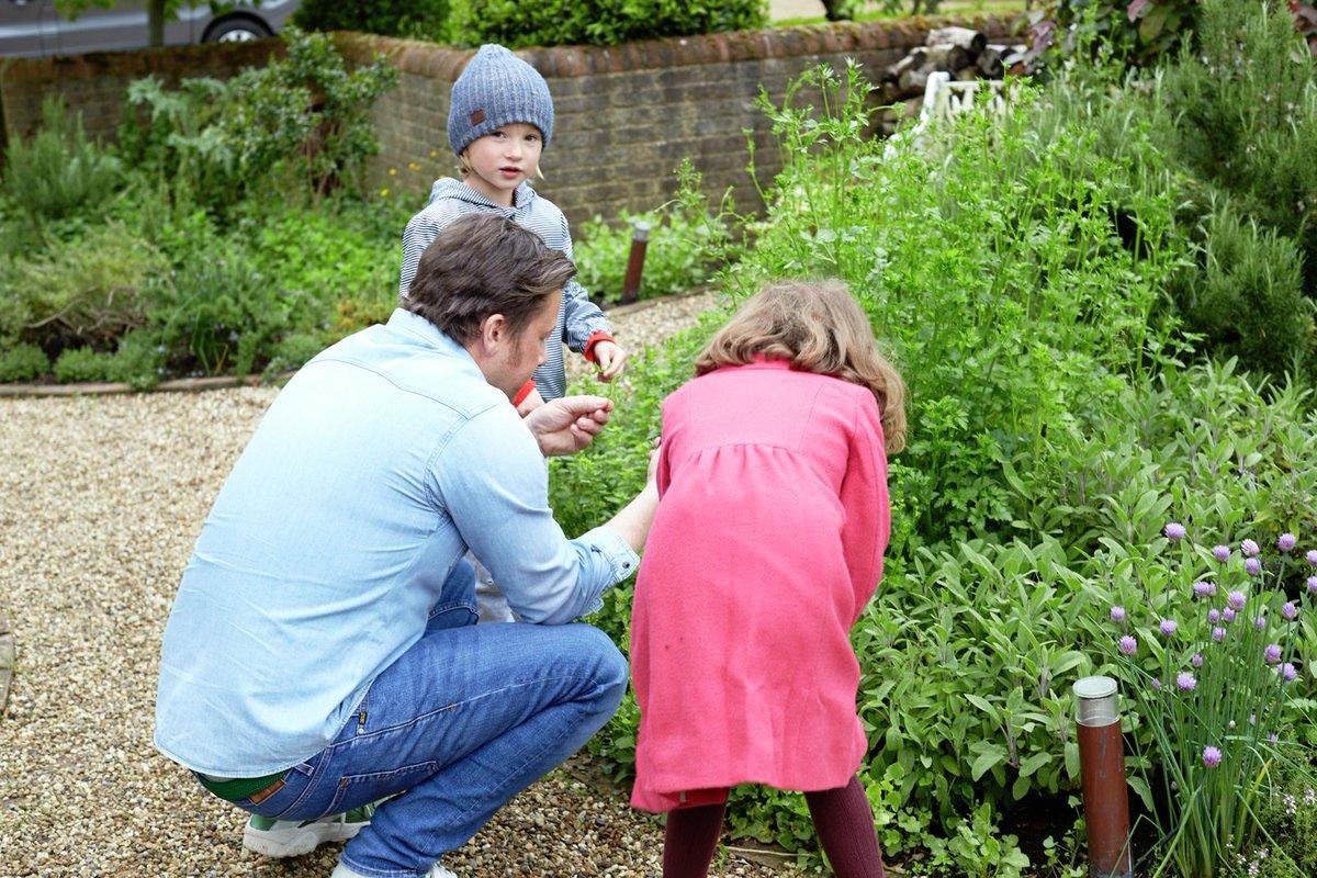 Guys take a tour inside my herb garden: https://t.co/NDKfxc28af https://t.co/Z5SSqyvF4V
