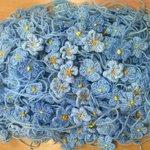 raising funds #forgetMenotchildren need help making forgetmenots I supply wool you do the knitting/crochet #handmade https://t.co/E1i8kJHgeY