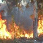 Sommario 19.35 @TgrRaiLazio incendi a Roma e nel Lazio. Sgomberata casa per anziani a Monte Mario @TgrRai https://t.co/txMfFlgAcU