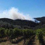 San Casciano, fiamme nel bosco Incendio a Castellina Marittima https://t.co/N7ynIbIL2t https://t.co/8kOqz6fe31