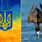 @adrozd83 #Україна #НашТризуб #УкрТві https://t.co/RceXVS7mMD
