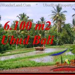 Beautiful 6,100 m2 LAND FOR SALE IN Ubud Tegalalang BALI TJUB552 https://t.co/cgEEFcxZy5 https://t.co/4KrdXNF8qC