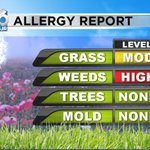 Sneezing and have itchy eyes? Weed pollen is really high right now. Grass, moderate. #dlh #pollen https://t.co/FpqFRk8qJU