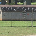 Circle G Ranch closes, exotic animals for sale https://t.co/yqHX9JTqyn https://t.co/CIZ9kEzzrb