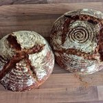 These cuties waiting4u @ @shedcafe freshly baked&so good😋 #organic #sourdough #realbread #artisan #rdguk @RealBread https://t.co/HLHRBxQsKW