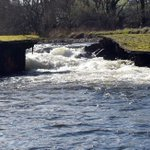 Convert damaged Ballincollig weir for watersport use https://t.co/htIqgWONQn https://t.co/9hi3EBV2Kr