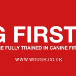 Pleased to say we passed our #Canine #FirstAid Course. #Dogwalker #WoughWalks #barnsleyisbrill #sheffieldissuper https://t.co/1fKteESptN