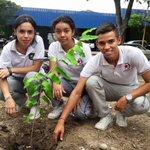 Paso a paso continuamos sembrando  con apoyo de la comunidad.  Aquí nuestros jóvenes empoderados del Medioambiente. https://t.co/Pjlx0RwU6o
