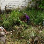 Trabajos de las cuadrilla en el canal de Amapolas, sobre Acacia a la altura de Almendros. https://t.co/gZDoElWAO9