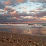 "🇺🇸🌹#eRD🍒☞  | ➤ ""Shells on Beach at Sunset""  ☞S Fredrick   | ➤ 😘 @TorontoBlonde   | ╰⇢🔻 ☞🍒@jlferguson50💯🔙👥 https://t.co/XxTcLTROHE"
