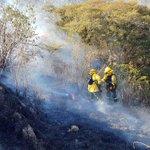 Continúan labores de sofocación de incendio forestal en el sector de Pintag. #EmergenciaCBQ https://t.co/W3nEDzCZOo