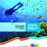 Qué dicha contar con la segunda barrera de #coral más grande del mundo¡#Honduras, un paraíso sin igual! #SomosParaTi https://t.co/J5kz7VByjQ