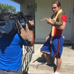 Andrew Ryan shows us his Burmese pythons. Theyve escaped a few times, and some neighbors are upset. #kxly https://t.co/WHtOqwuDTb