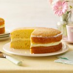 You cant go wrong with a perfectly #moist lemon drizzle cake! ;-) 🍋 #GBBO https://t.co/qtDIKbZgWJ https://t.co/GlkPwvivfn
