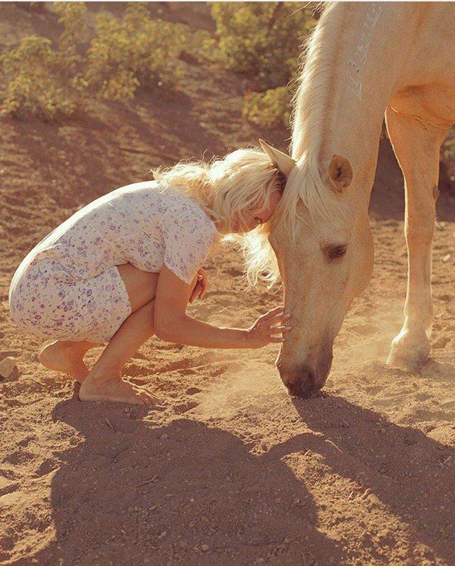 @skydogsanctuary #wildhorses https://t.co/VIlSs7eD6r