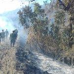 [Boletín] Cooperación Interinstitucional para mitigar el incendio forestal en el Pasochoa. https://t.co/LBvZKcdLGf https://t.co/QAKIYYM3l7