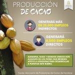 El rubro cacaotero generará miles de empleos en #Honduras y habrá más desarrollo en el país #VamosPorMasCambios https://t.co/tuAFnxPpWI