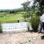 Presidente Hernández urge al Congreso aprobar medidas para repotenciar el agro. LEA MÁS: https://t.co/GUEUbyNf3H https://t.co/PkmGWYkP4M
