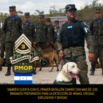 Gracias pueblo hondureño, por la confianza y credibilidad hacía la PMOP, esa confianza nos fortalece. https://t.co/GHSto1jZPv