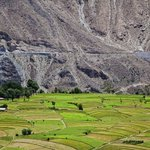 Bamburet Valley, Chitral Courtesy: S.M Bukhari Photography #tripkar #chitral #beautifulpakistan #Pakistan https://t.co/GtjHk9u30Z