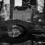 Painting With Light @CentralParkNYC @NYC @discovering_NYC #NYC #Nigh https://t.co/mrwdzpFDvr