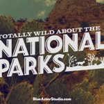 Happy birthday to the @NatlParkService, provider of amazing memories! #NPS100 #FindYourPark https://t.co/OjQvh28kpa