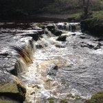 Nice little run #rivelinvalley #5miles #sheffieldissuper https://t.co/jToL6guVTY