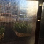 Sun rising over the @1233newcastle veggie patch through the studio window. Happy Friday! https://t.co/uScAxAIEz0