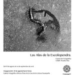 "#NoTeLoPierdas ""Las alas de la escolopendra"" de Citlallic Rosales en CCO @GabinoCue @GobOax #Oaxaca @SECULTA_GobOax https://t.co/fBU1yJi1dp"