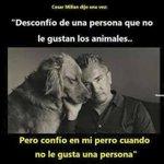#NoConfioEn Una persona que no le gustan los animales... Pero confío en mi perro cuando no le gusta una persona 🐾🐾 https://t.co/9tk5SXAKNc