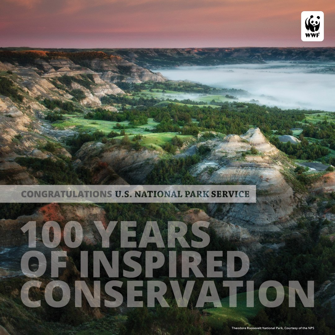 RT @World_Wildlife: THANK YOU for your work to preserve these wild places and the species that call them home. #NPS100 https://t.co/J45Rc83…