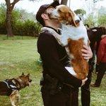 Te quiere más que a sí mismo. Nunca le maltrates, es #DELITO y si lo haces, te detendremos. We ❤️  #animals https://t.co/W5c0cTdqC1