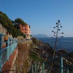 A #Genova angoli di straordinaria bellezza a una manciata di minuti dal centro    https://t.co/2Z2QnyXwYW https://t.co/y0i1t5cfM4