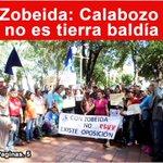 #BuenViernes | Zobeida @elhinnaoui : Calabozo no es tierra baldia #RevoluciónVerdadera  @NicolasMaduro @dcabellor https://t.co/v9CXYbtOB3