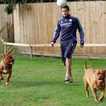 As its #NationalDogDay!  That time Frank Lampard brought his two dogs to training...  ⚽️ https://t.co/5UYSFQolgc