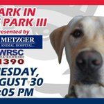 Tuesday, bring your #1 pup to Bark in the Park! Dogs enter FREE - humans, get your tix here: https://t.co/xZzY5rLZB2 https://t.co/92MYZLjNBI
