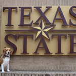 Happy #NationalDogDay from #txst! We love seeing photos of your pups showing their Texas State spirit! https://t.co/oyIpm08u5C