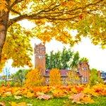 15 Photos that Prove #Missoula is undeniably beautiful in the fall! #VisitMissoula  https://t.co/ouKEOVihqb https://t.co/GiTzVZoV1i