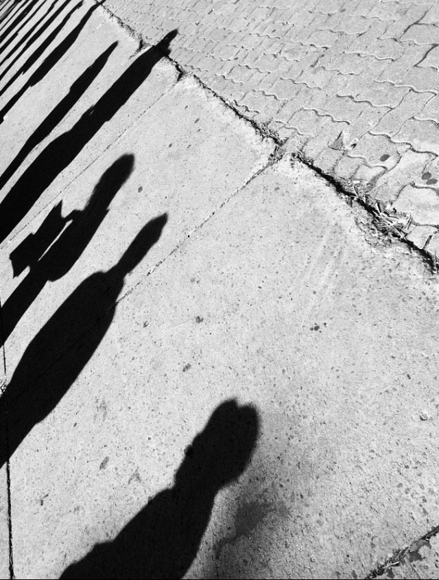 Shadows waiting for the bus https://t.co/tGlCSw2OJI #monochrome #photography #Montreal https://t.co/EBu5PptoDp
