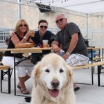 Its #NationalDogDay! Show em some love today at our pet friendly BEERGARDEN 🐶 https://t.co/ZUpdxAGOkd