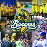 The 2016 Coastal Plain League Organization of the Year is @TheSavBananas! https://t.co/NRo4qpVxvT https://t.co/XtZTW4u0XD