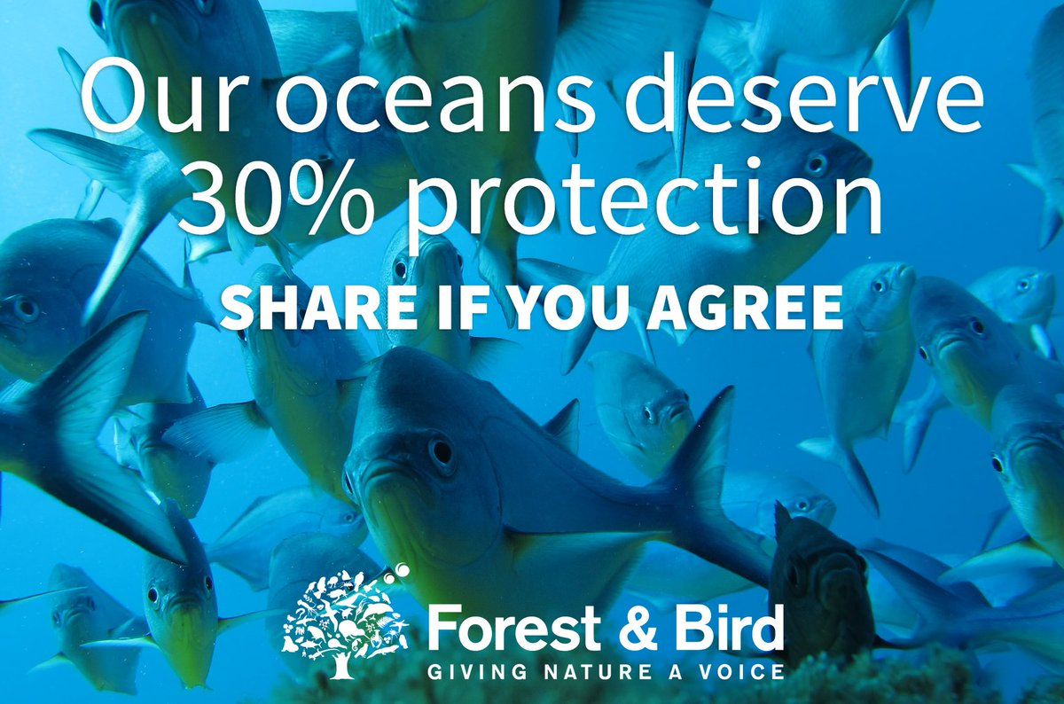 We're disappointed the NZ government abstained from voting in the #IUCNCongress to protect 30% of our oceans. https://t.co/5H3YRk48wL
