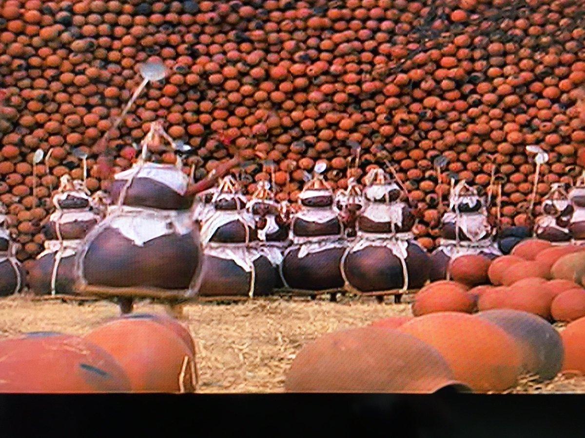 今朝は「ひょうたんの群れが踊る」という画期的なインド映画を観ている。 https://t.co/JubsRizOzs