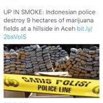 Are we inhaling marijuana now ? #Haze https://t.co/m1BMj1si4z