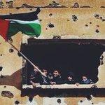 هنا جذوري هنا قلبي هنا لغتي ❤ فكيفَ أوضحُ؟ هل في العشقِ إيضاحُ؟  #قروب_فلسطيني #فلسطين_تجمعنا https://t.co/o657OOeC1n