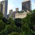 📸 Central Park / The Plaza 🌳 #Plush #NYC @EverythingNYC @NYCDailyPics @nycfeelings #nbc4ny https://t.co/IQfjYnMPuy